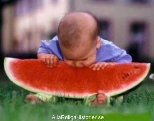 barn-vattenmelon