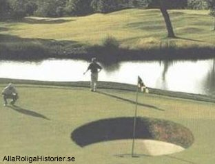 golf-stort-hal
